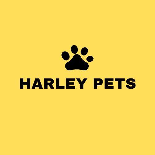 - Michał, Harley Pets